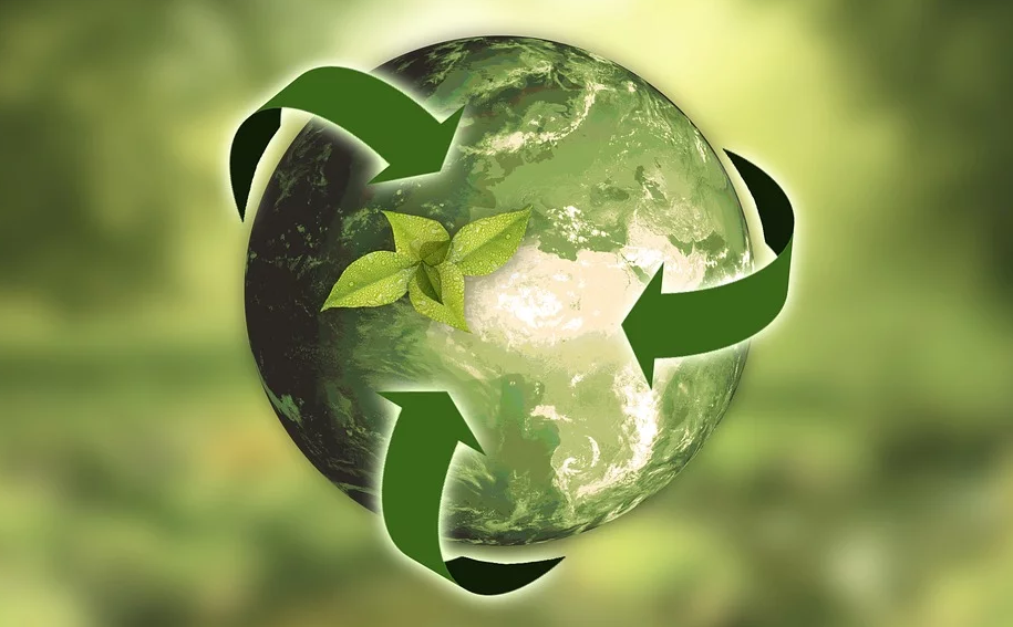 2 Ways to Completely Ruin an Environmentally Friendly Label