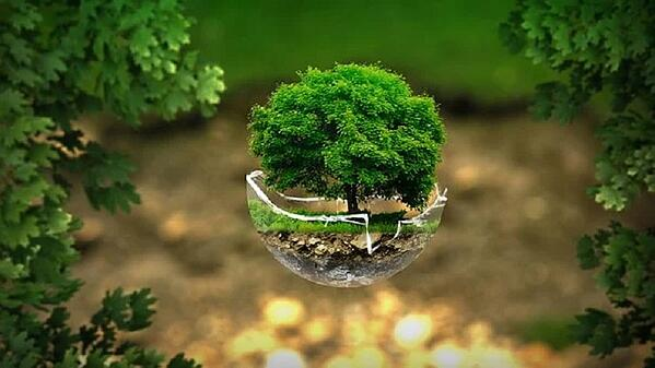 How Can I Make my Printing Processes Environmentally Friendly
